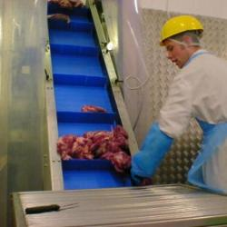 Food Modular Belt Elevator Conveyor