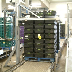 Chain Pallet Conveyor System